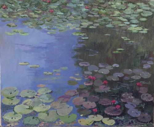 Lotus pond- Diyawanna Oya