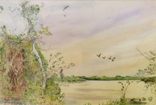 Bird Sactuary - Baddagana