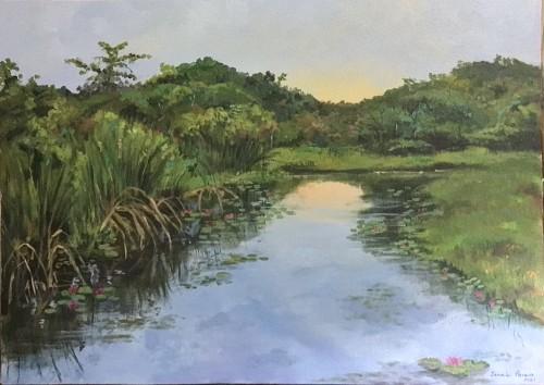 Sunrise in the wetlands
