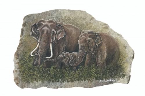 """""""Thunpath Raana"""" (Wildlife- SL)"""