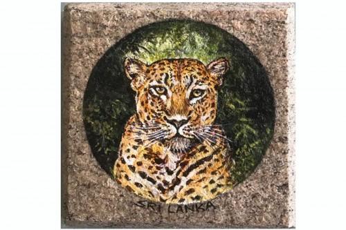 Tiger (Wildlife- Sri Lanka)