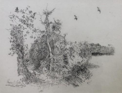 Bird Sanctuary - Baddagana