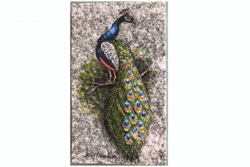 Peacock (Wildlife- Sri Lanka)