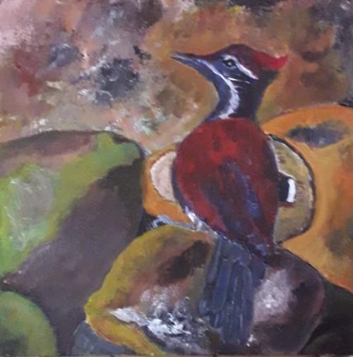 Woodpecker-Godagama, Sri Lanka