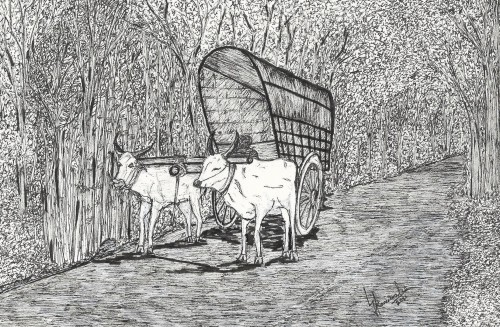 Bullock Cart in Ceylon