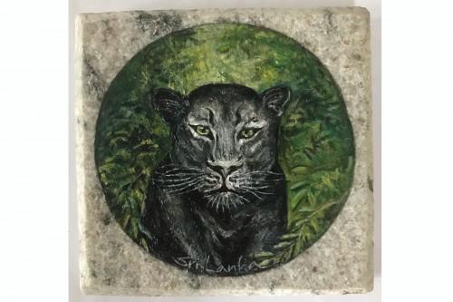 Black Tiger (Wildlife-Sri Lanka)