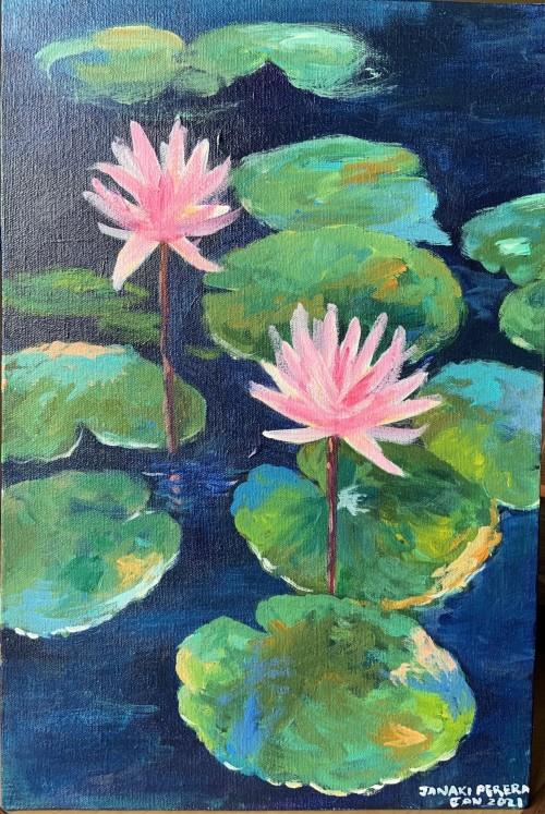 Lotuses, Sri Lanka