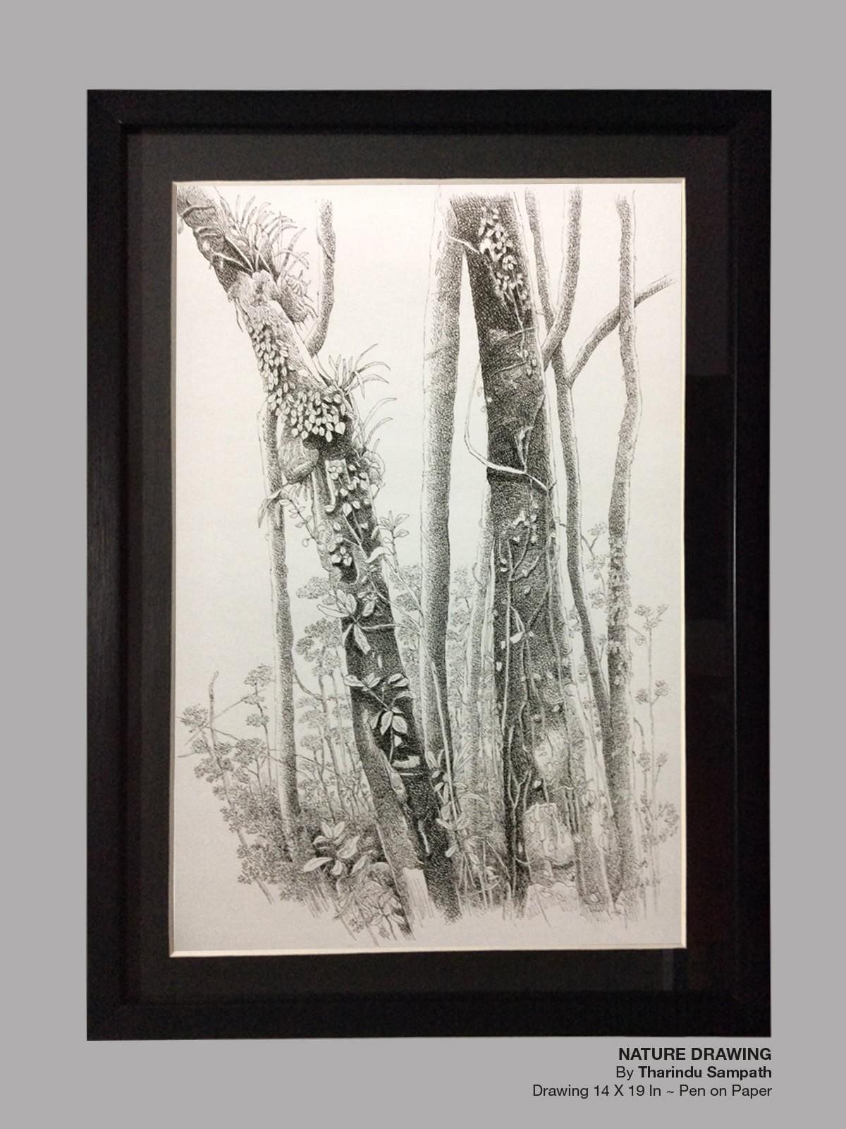 Nature Drawing by THARINDU SAMPATH SIRIWARDANA