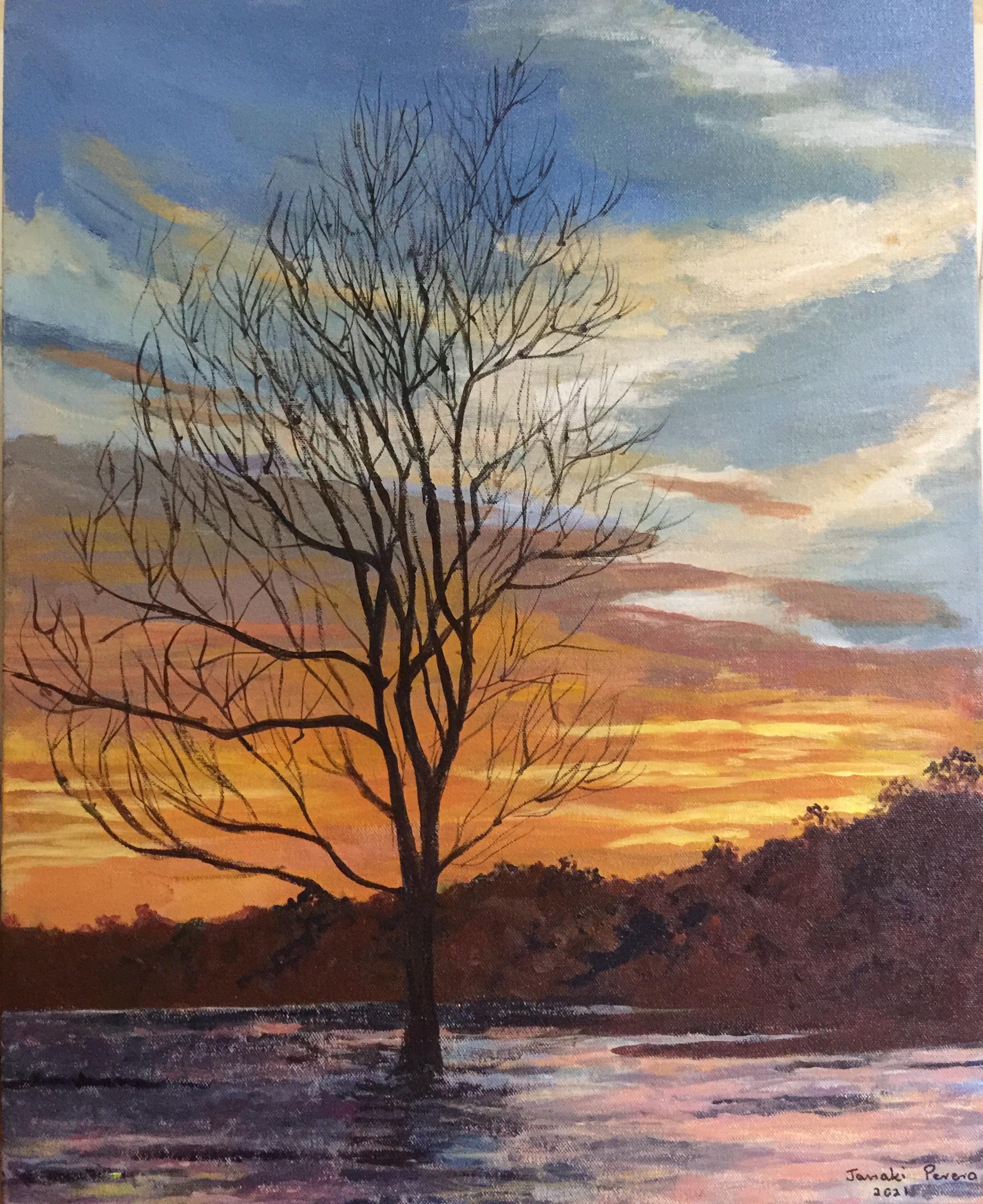 Sunset by Janaki Perera