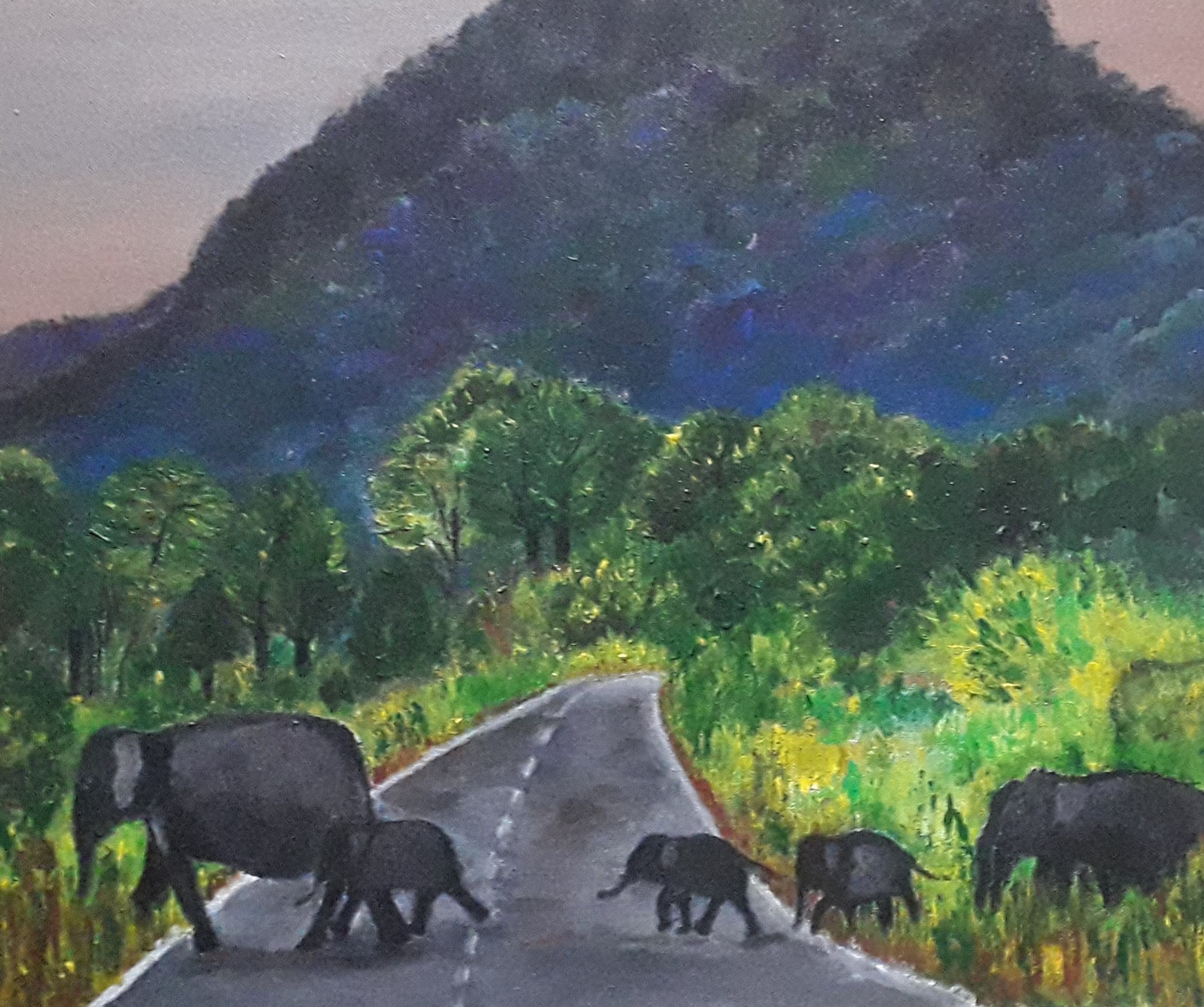 Sri Lankan Elephants by Simpson David
