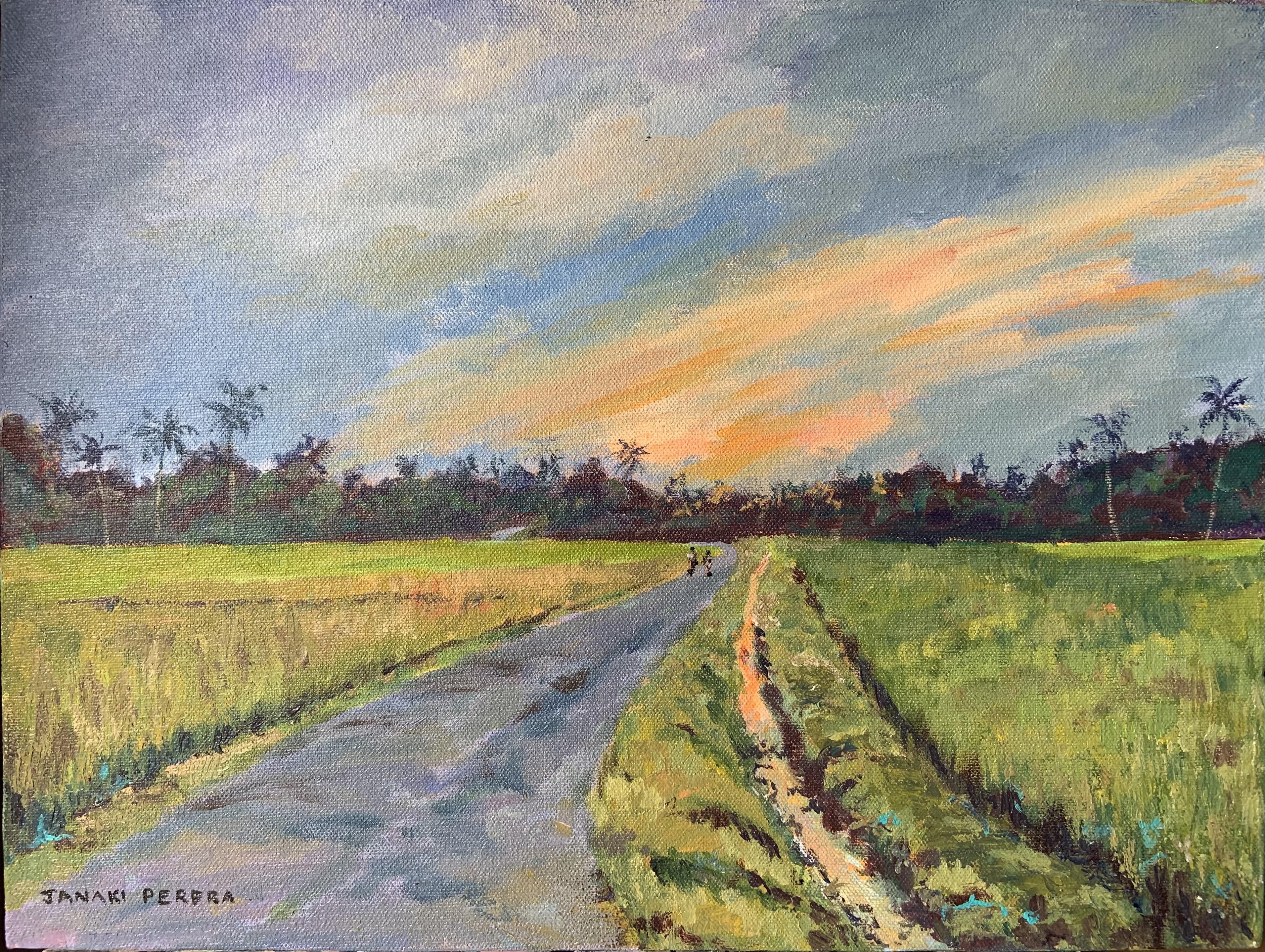 Sunset by paddyfield by Janaki Perera