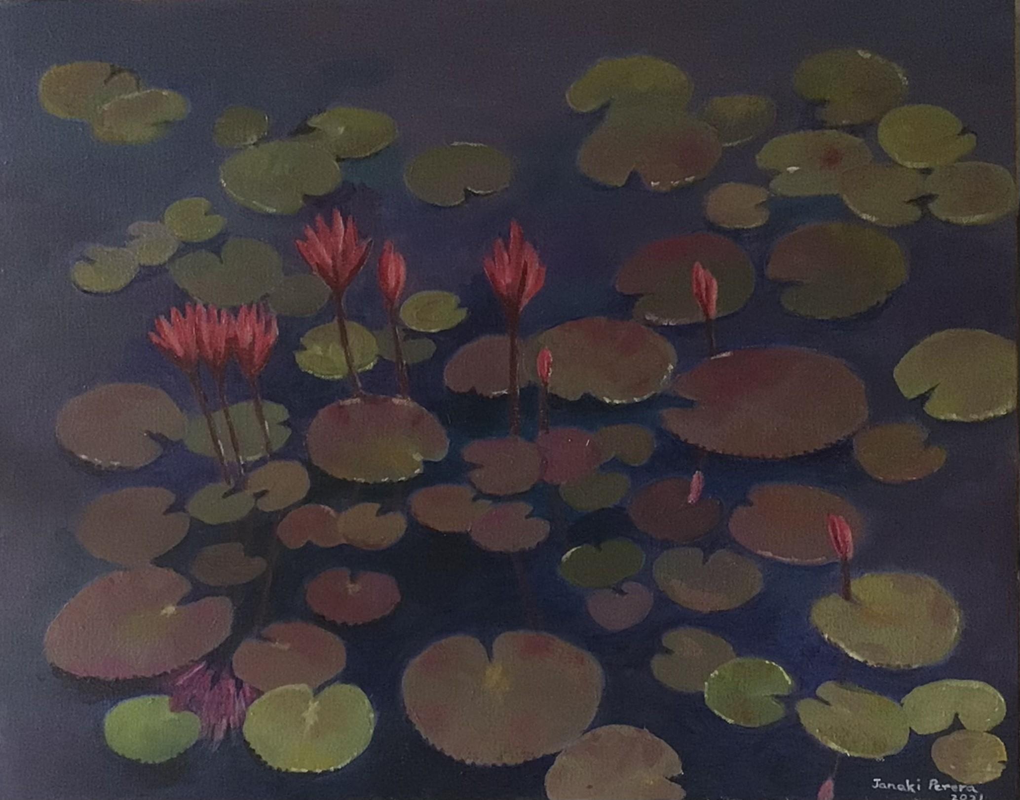 Lotus pond by Janaki Perera