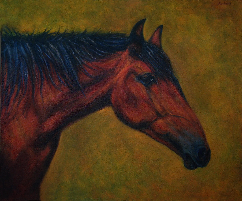 Profile of  bay Horse by RAVINDRANATH JAYASEKERA