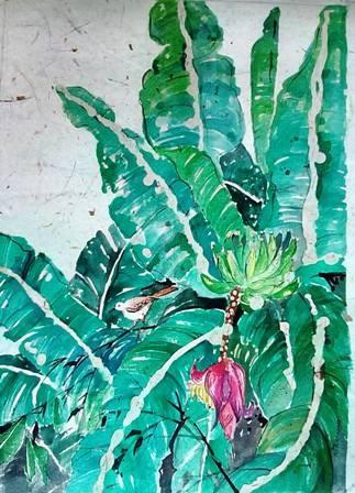 Banana tree by Nihal Senarathna