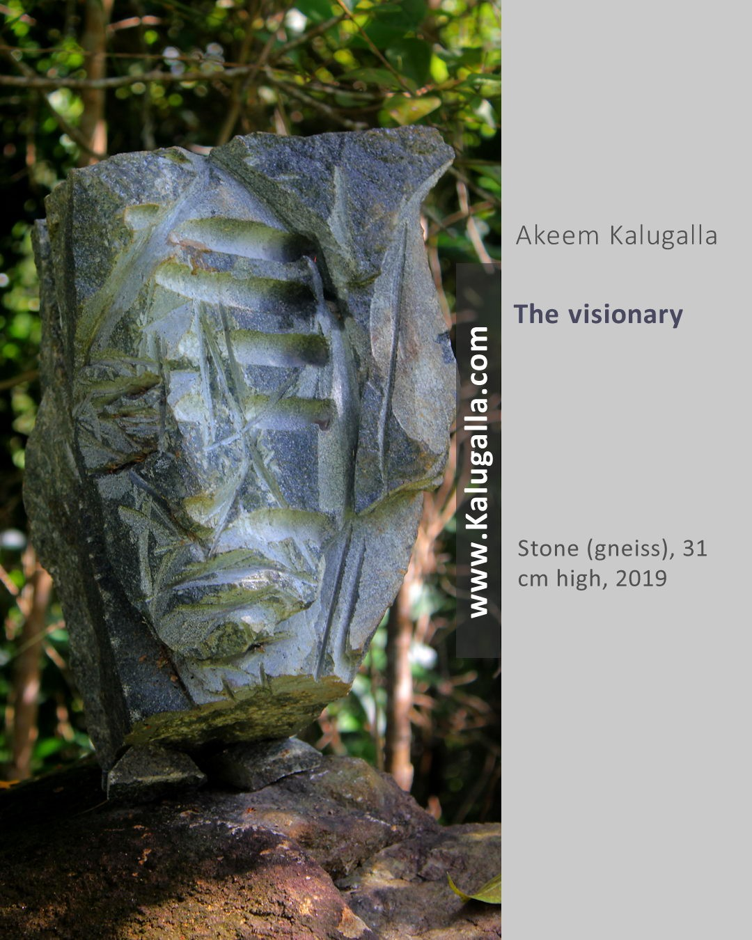 The Visionary by Akeem Kalugalla
