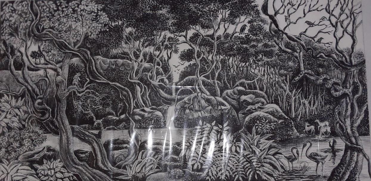 Line drawing by SUMITH FERNANDO