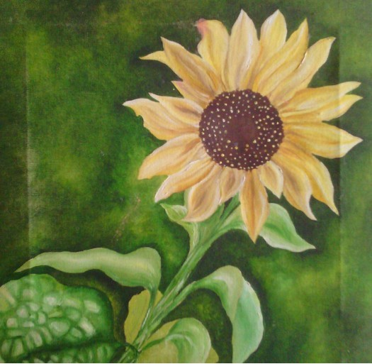 sun flower by Fathima Haseena