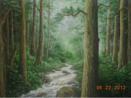 Sinharaja rain forest.